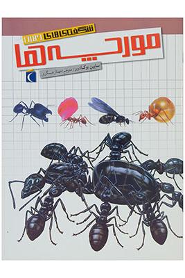 شگفتيهاي جهان: مورچهها
