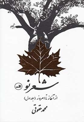 شعر نو از آغاز تا امروز 2جلدي