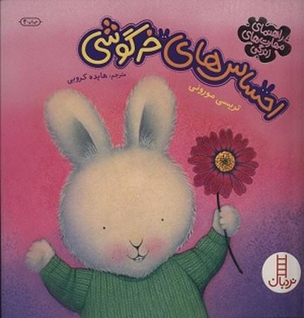 احساس هاي خرگوشي