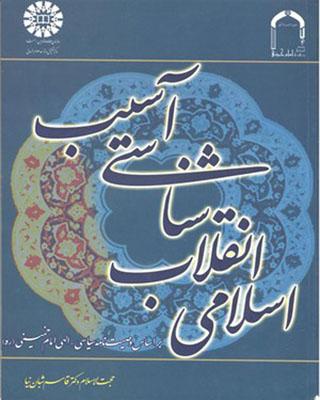 آسيب شناسي انقلاب اسلامي / علوم سياسي 1461