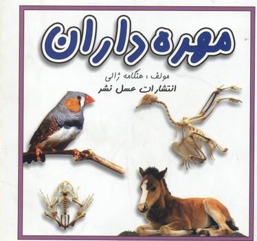مهره_داران