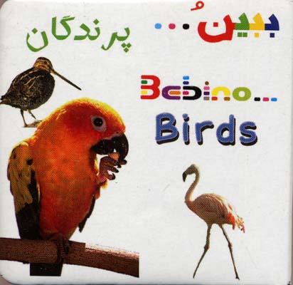كتاب-آموزشي-ببين(پرندگان)