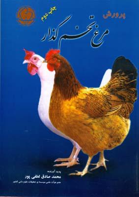 پرورش مرغ تخمگذار (لطفي پور) مرز دانش