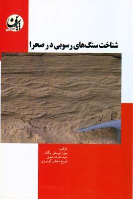 شناحت سنگ هاي رسوبي در صحرا (يوسفي يگانه) سايه پروين