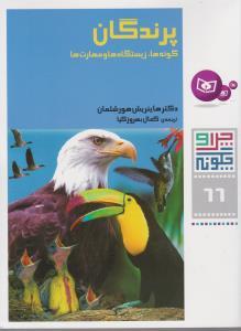 چرا و چگونه66 (پرندگان:گونه ها،زيستگاه ها و مهارت ها)،(شميز،رحلي،قدياني)