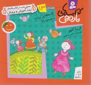 كتاب هاي نارنجي،هفته ي13 (كاسه هاي پرنده و 6 قصه ي ديگر)،(گلاسه،شميز،خشتي كوچك،قدياني)