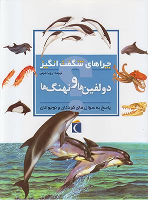 تصویر چراهای شگفت انگیز دلفین ها و نهنگ ها