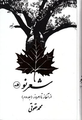 تصویر شعر نو از آغاز تا امروز2 جلدی