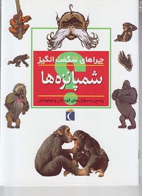 تصویر چراهای شگفت انگیز شمپانزه ها