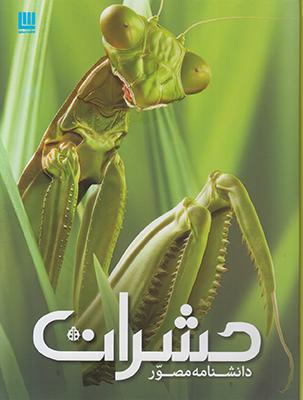 تصویر دانشنامه مصور حشرات
