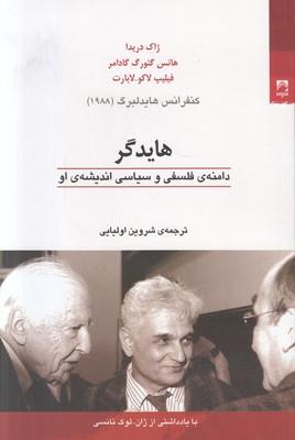تصویر هایدگر (دامنه فلسفی و سیاسی اندیشه او)