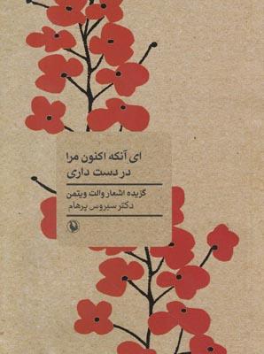 تصویر ای آنکه اکنون مرا در دست داری