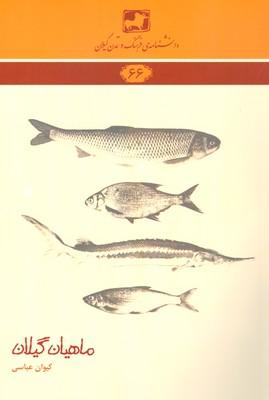 تصویر دایره المعارف حل جدول