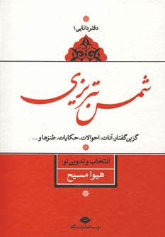 تصویر شمس تبریزی(دفتردانایی1)