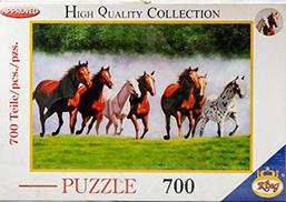 پازل 700 قطعه 2906