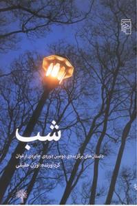 تصویر شب(داستان های برگزیده ی دومین دوره ی جایزه ی ارغوان)