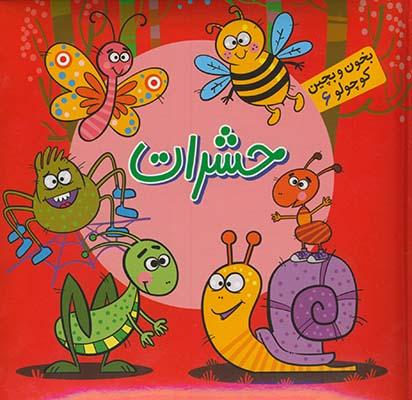 """تصویر حشرات """"بخون و بچين كوچولو6"""""""