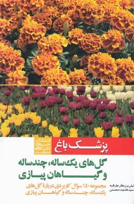 پزشك باغ گل هاي يك ساله چند ساله و گياهان پيازي - محسني