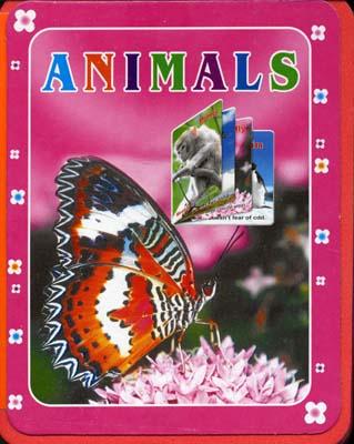 كتاب-فوم-حيوانات