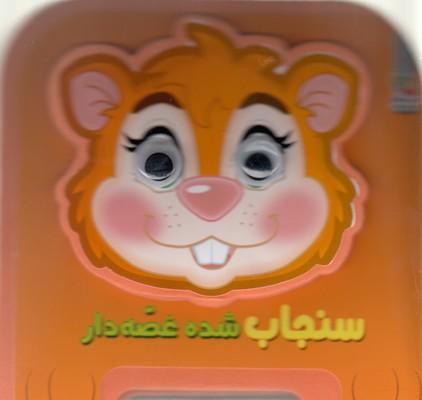 تصویر سنجاب شده قصه دار
