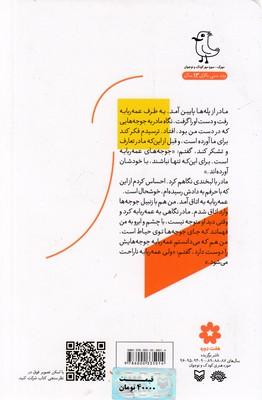 تصویر قصه هاي جورواجور 3-جوجه ي عمه ربابه