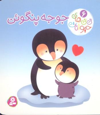 ني-ني-هاي-حيوانات-6-جوجه-پنگوئن