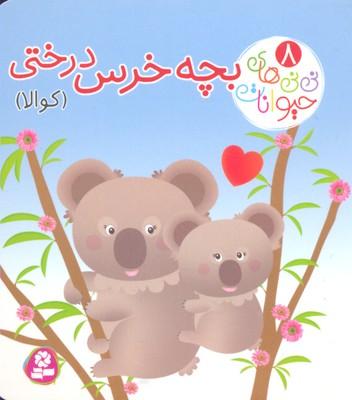 ني-ني-هاي-حيوانات-8-بچه-خرس-درختي-كوآلا
