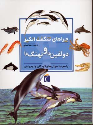 چراهاي-شگفت-انگيز---دلفين-ها-و-نهنگ-ها