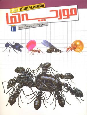 شگفتي-هاي-جهان(مورچه-ها)
