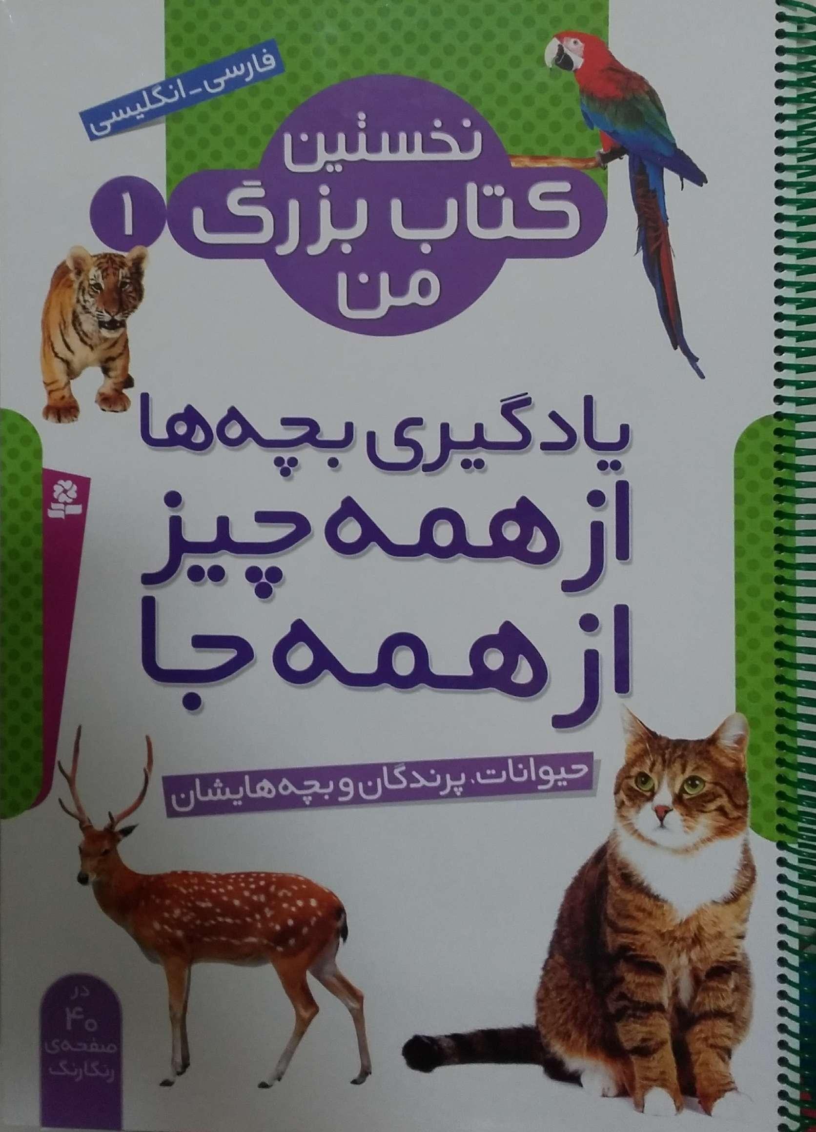 نخستين-كتاب-بزرگ-من(1)حيوانات-پرندگان-و-بچه-هايشان-