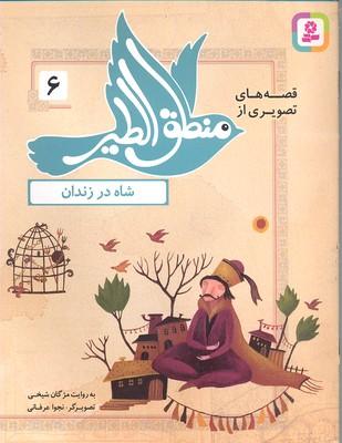قصه-هاي-منطق-الطير-6-شاه-در-زندان