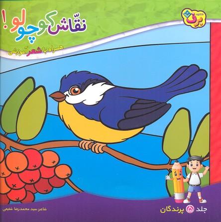 نقاش-كوچولو-5-پرندگان