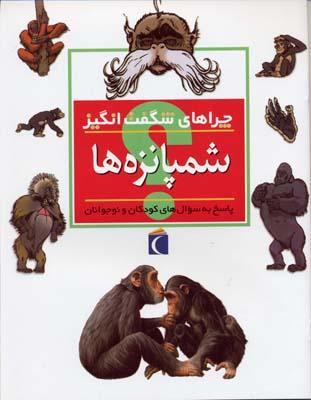 چراهاي-شگفت-انگيز---شمپانزه-ها