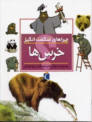 چراهاي-شگفت-انگيز---خرس-ها
