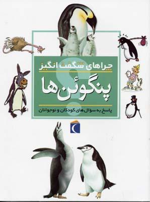 چراهاي-شگفت-انگيز---پنگوئن-ها