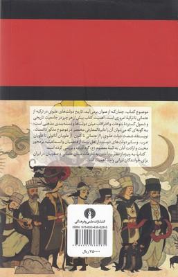 تصویر دولت هاي علوي