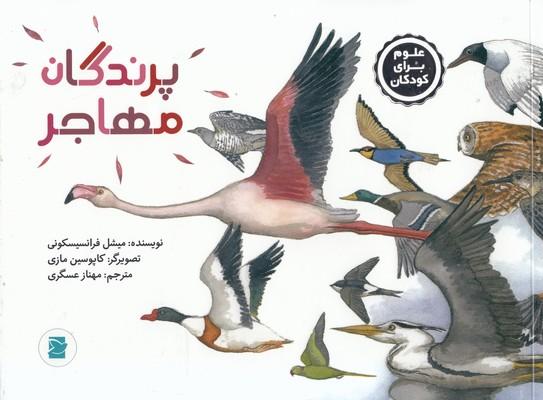 تصویر پرندگان مهاجر-علوم براي كودكان