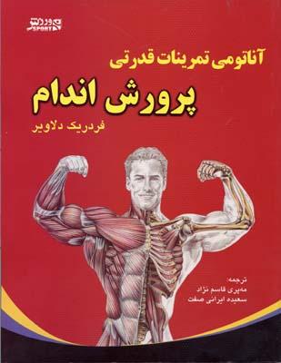 آناتومي-تمرينات-قدرتي-پرورش-اندام