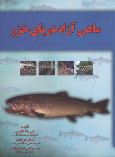 ماهي-آزاد-درياي-خزر