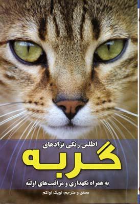 اطلس-رنگي-نژادهاي-گربه