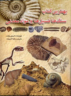 سنگ-ها-فسیل-ها-و-مواد-معدنی
