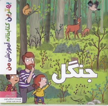 بهترين-كتابخانه-آموزشي-جنگل