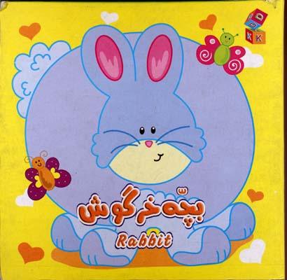 بچه-خرگوش(مقوايي)دانشمند-كوچك