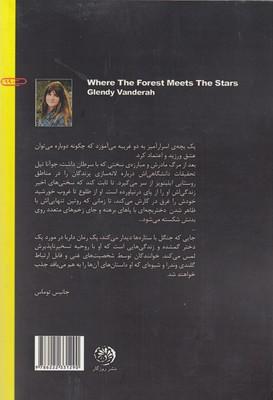 تصویر جايي كه جنگل با ستاره ها ديدار مي كند