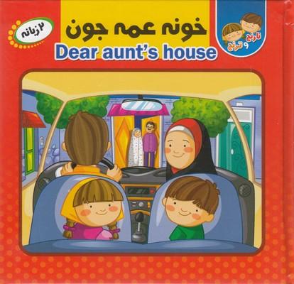 كتاب-پازل-خونه-عمه-جون