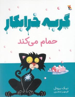 تصویر گربه خرابکار حمام می کند