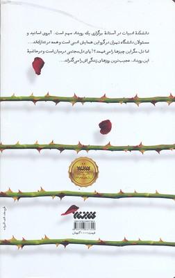 تصویر ايهام