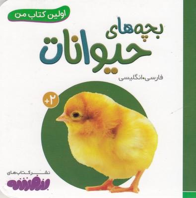 تصویر اولين كتاب من-بچه هاي حيوانات