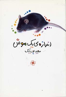 اندازه-يك-موش