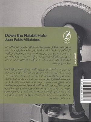 تصویر در قعر لانه خرگوش